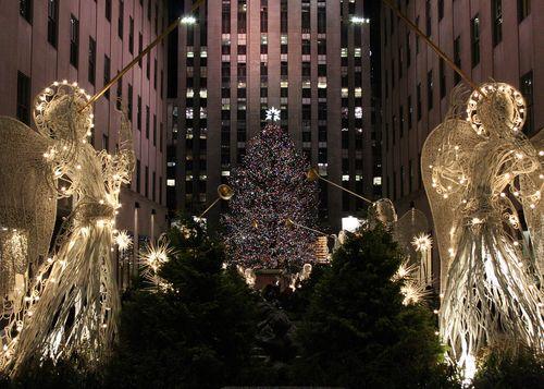 Christmastreeattherock
